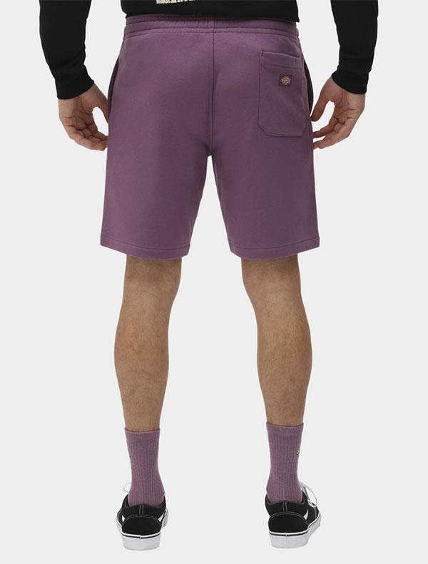 Dickies מכנסיים קצרים CHAMPLIN דיקיס