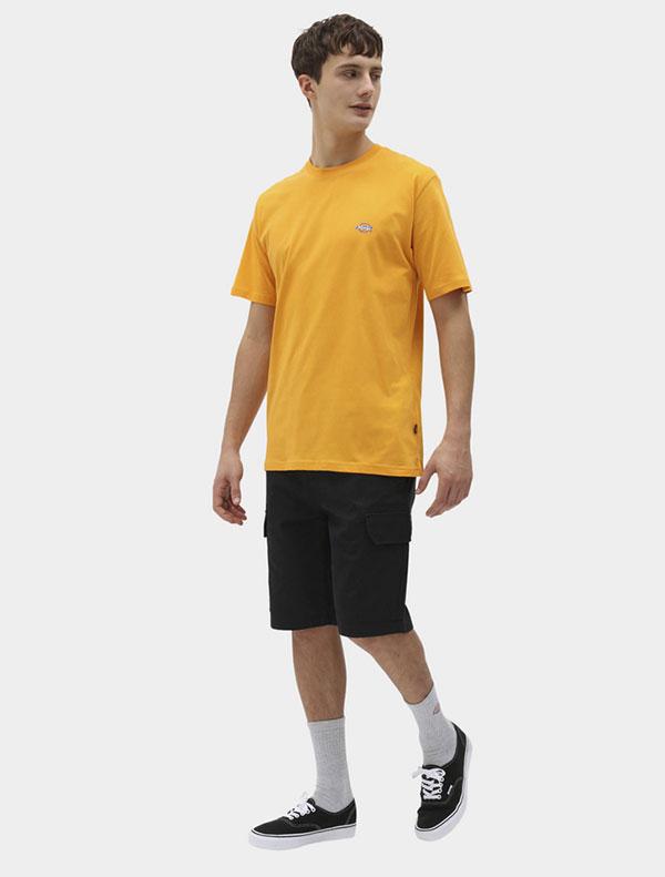 Dickies חולצת טי קצרה MAPLETON דיקיס