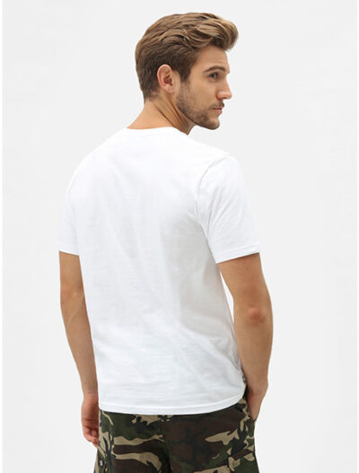Dickies חולצת טי קצרה STOCKDALE דיקיס