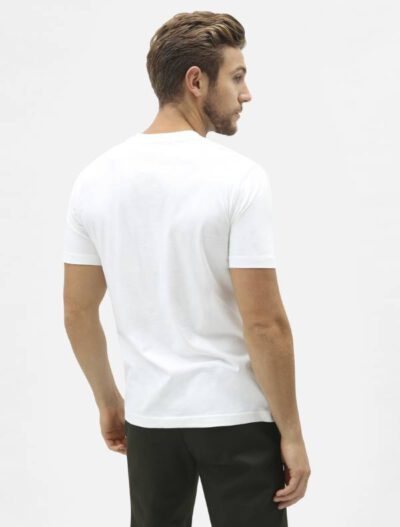 Dickies מארז 3 חולצות טי V NECK דיקיס