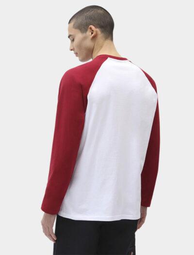 Dickies חולצת טי ארוכה COLOGNE דיקיס
